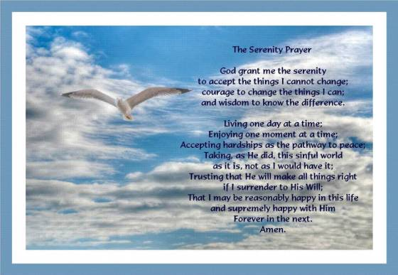 SerenityPrayer with gull